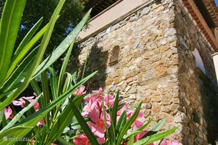 Vacation rental France, French Riviera,  Le Plan-de-la-Tour holiday house Hameau des Claudins No. 9 Tower