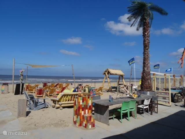 Strandpaviljoen 'Buitengewoon' op het strand voor het appartement.