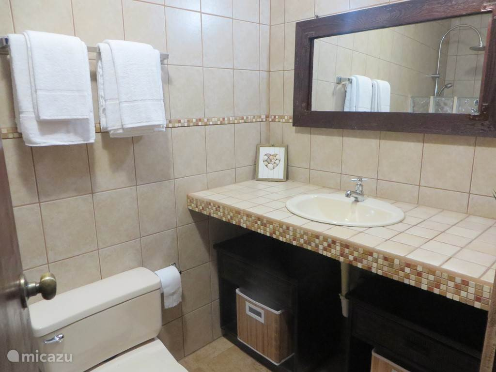 Second bathroom with shower, sink and toilet