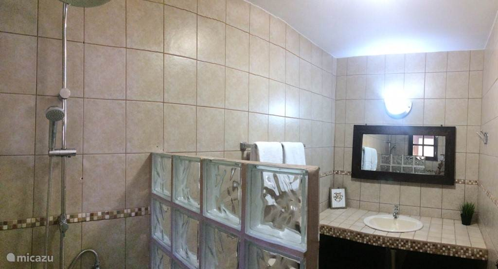 Second bathroom, seen from the shower