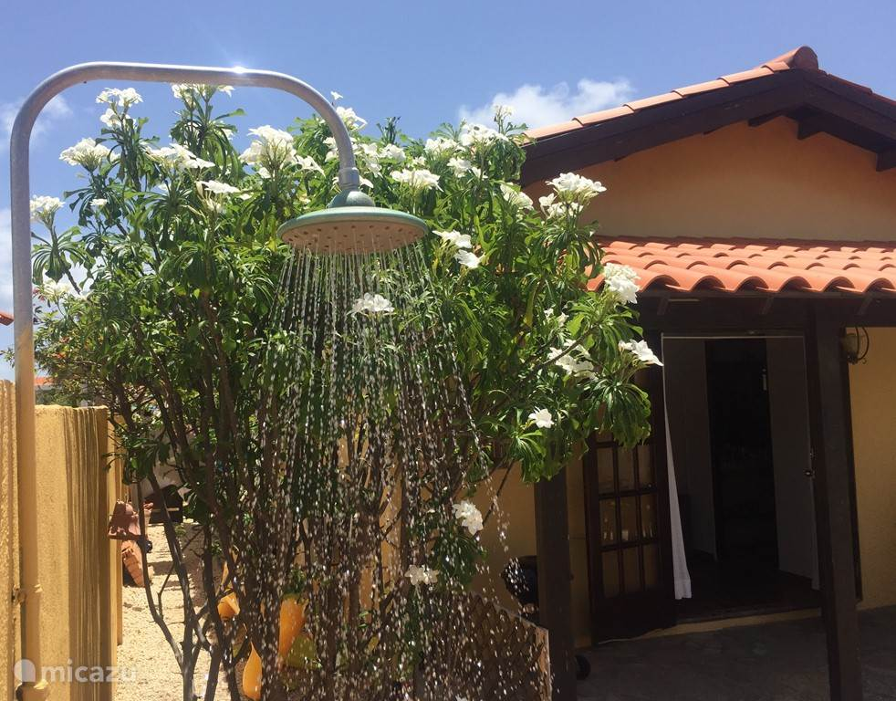 Outdoor shower by the pool