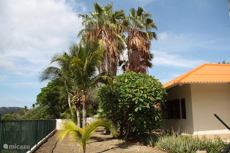 Vakantiehuis Curaçao, Curacao-Midden, Julianadorp Villa Tropenwoning Curacao