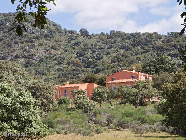 Vakantiehuis Spanje, Extremadura, Arroyomolinos vakantiehuis Finca el Rabilargo - la encina