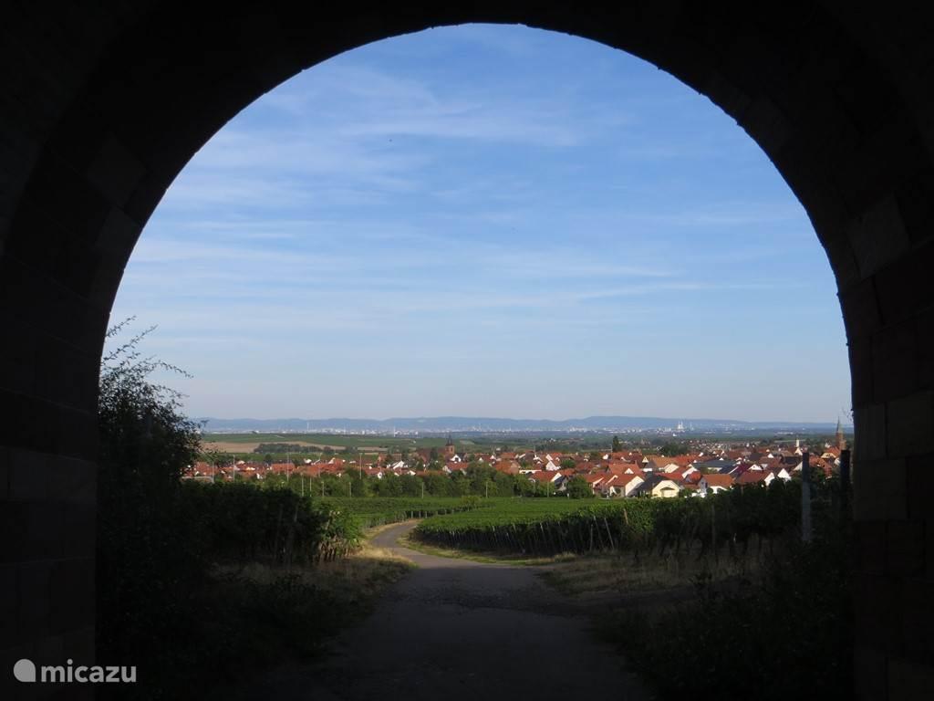 Sausenheim, een klein dorpje behorende bij Grünstadt waar het heerlijk wandelen en fietsen is.