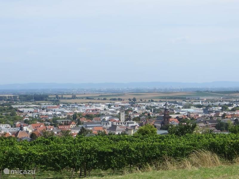 Grünstadt vanuit het Stadtpark