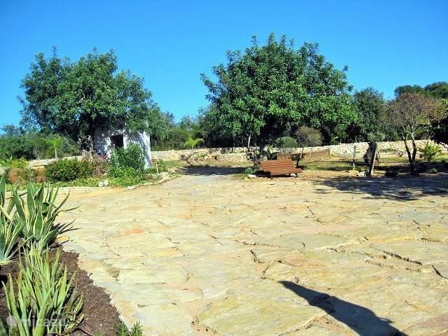 Bankje onder de boom, we hebben meerdere zit hoekjes in de tuin.