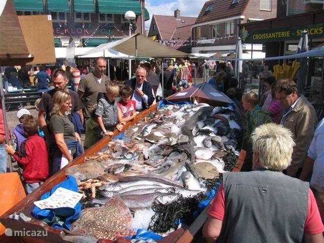 Woensdagavond een braderie en op de donderdag een markt.