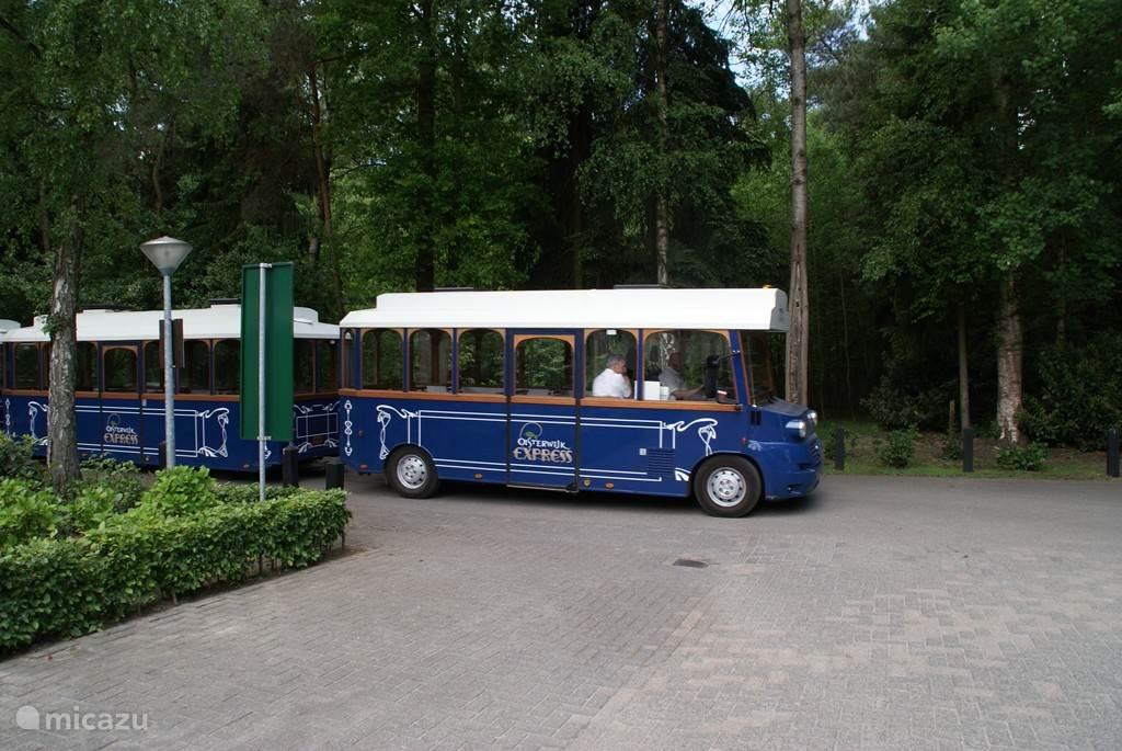 Het Oisterwijkse treintje brengt u overal naar toe in Oisterwijk.