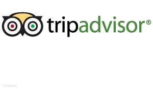 TripAdvisor Review: Perfect Place!