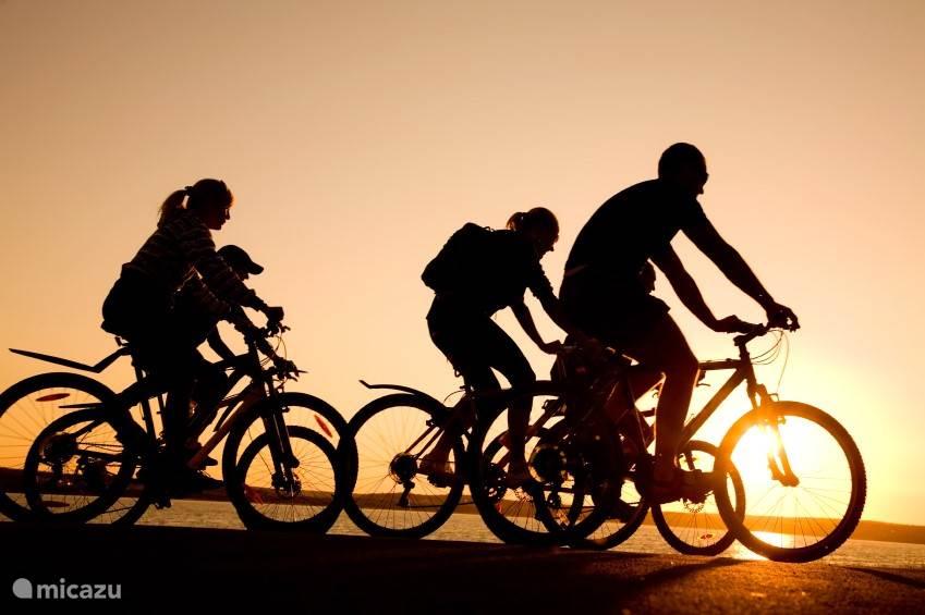 huur een fiets en ondekt hele kust
