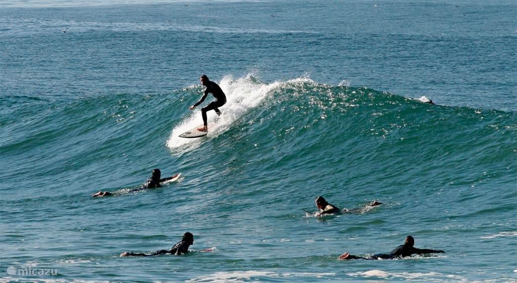 surf school is dichtbij