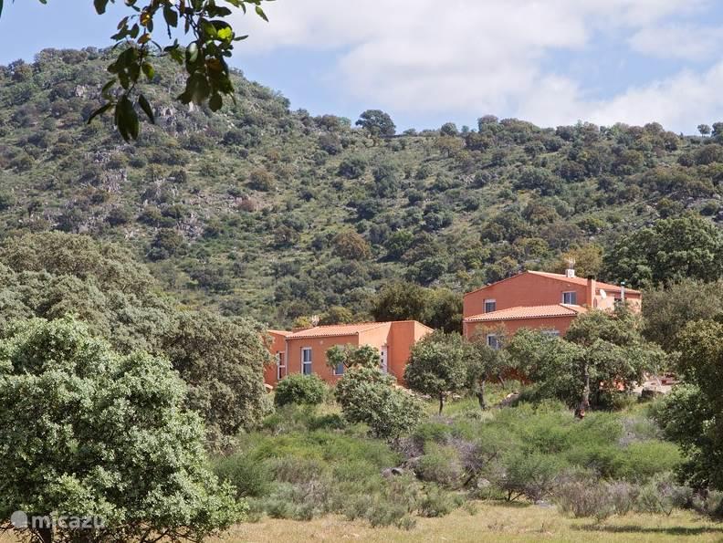 Vakantiehuis Spanje, Extremadura, Arroyomolinos vakantiehuis Finca el Rabilargo - el alcornoque