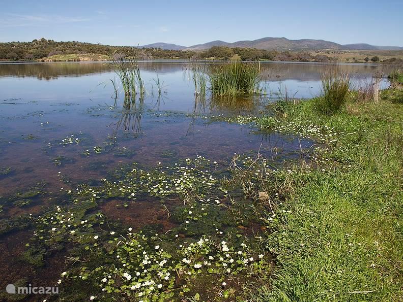 Landschappen in Extremadura