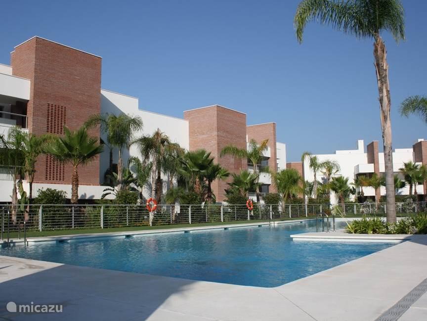 Het prachtige zwembad achter het appartement