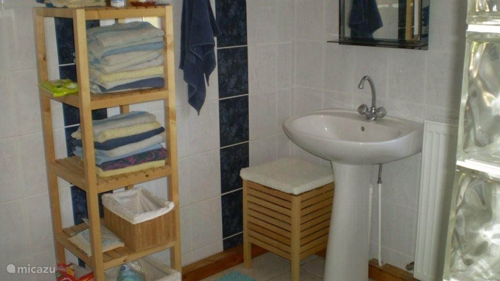 Fully tiled bathroom with shower and toilet
