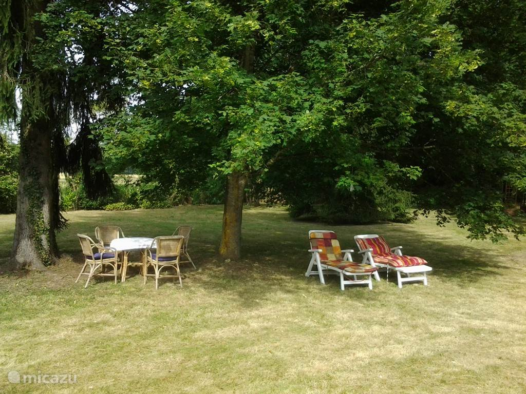 View of garden with seating and chairs.