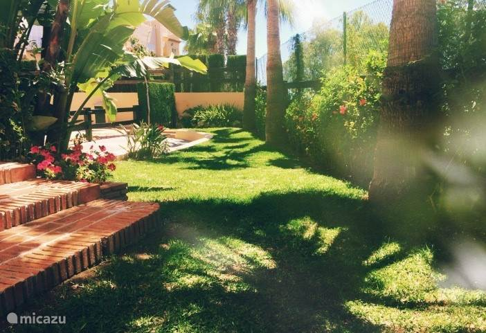 De tuin naast het terras. Groen en met een schaduwspel van de palmbomen.