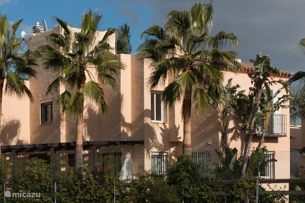 Dit is het (vrije) uitzicht op de achtertuin. Geen achterburen, en over de gehele lengte van het pand terras, gazon en palmbomen.