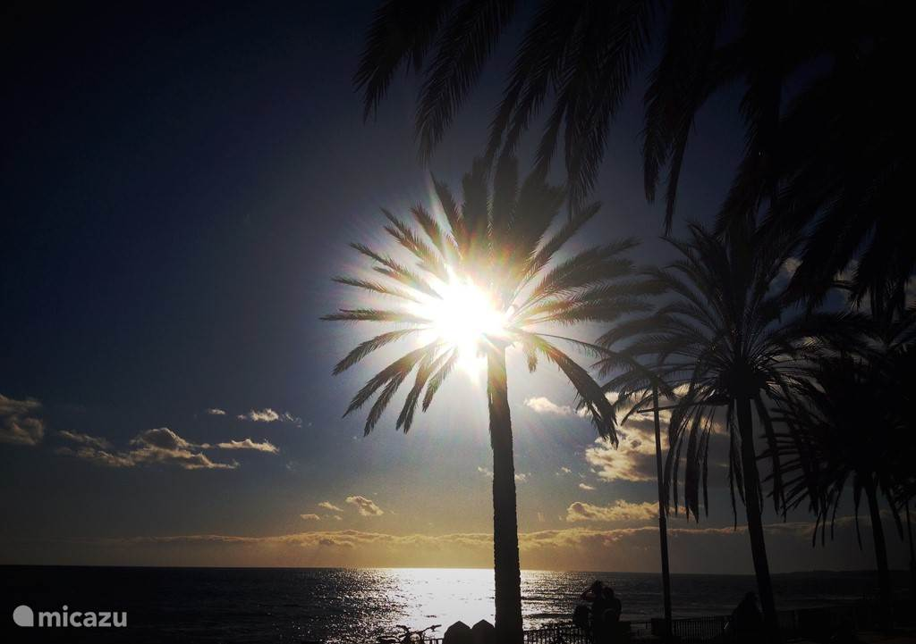 Sunset op de mooie boulevard van Marbella, gemaakt rond 6 uur 's avonds. Jullie gaan hier absoluut genieten!