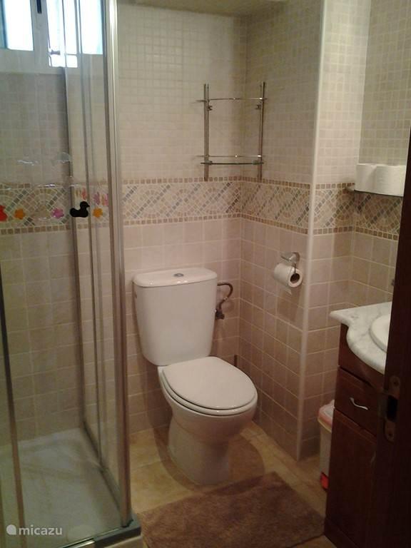 Badkamer met douche, toilet en lavabo.