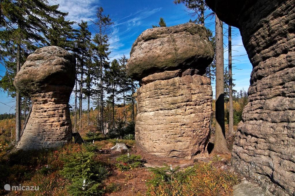 Wandelen in de omgeving broumovske steny