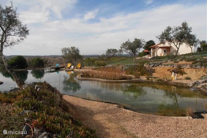 Vakantiehuis Portugal, Alentejo, Ourique Bungalow Monte Flora