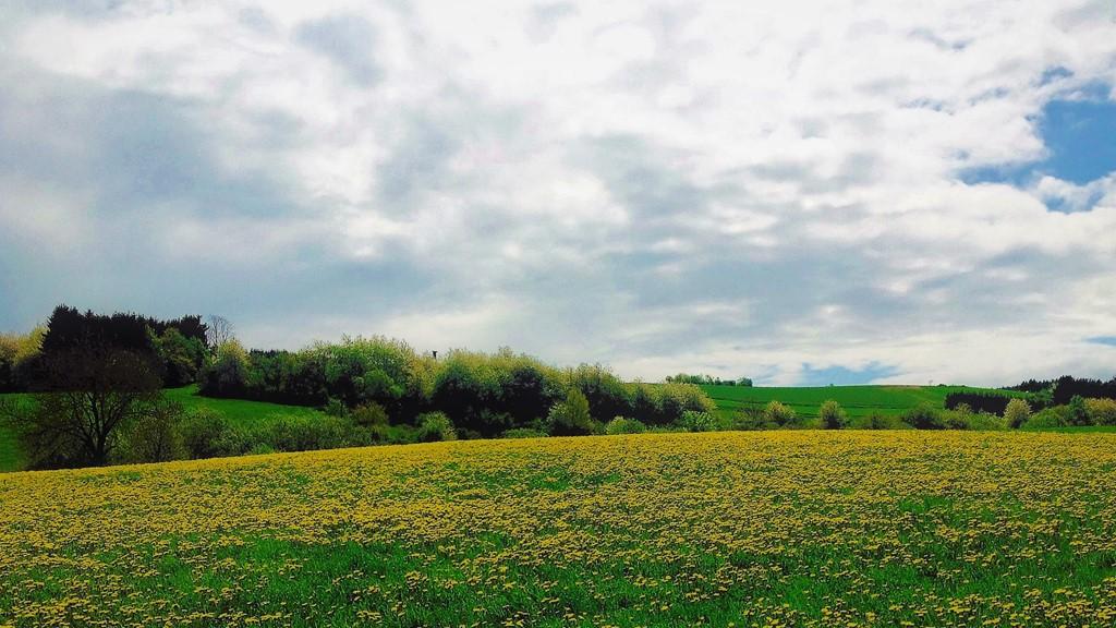 Beleef de lente in de Eifel. Tot 15 april 10 % korting op het laagste tarief!