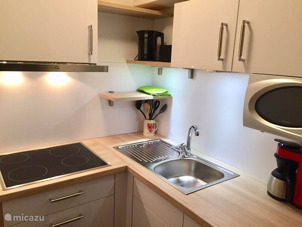 Vacation rental Austria, Tyrol, Niederau apartment Sonnenalp Edelweiß (1-4 people)