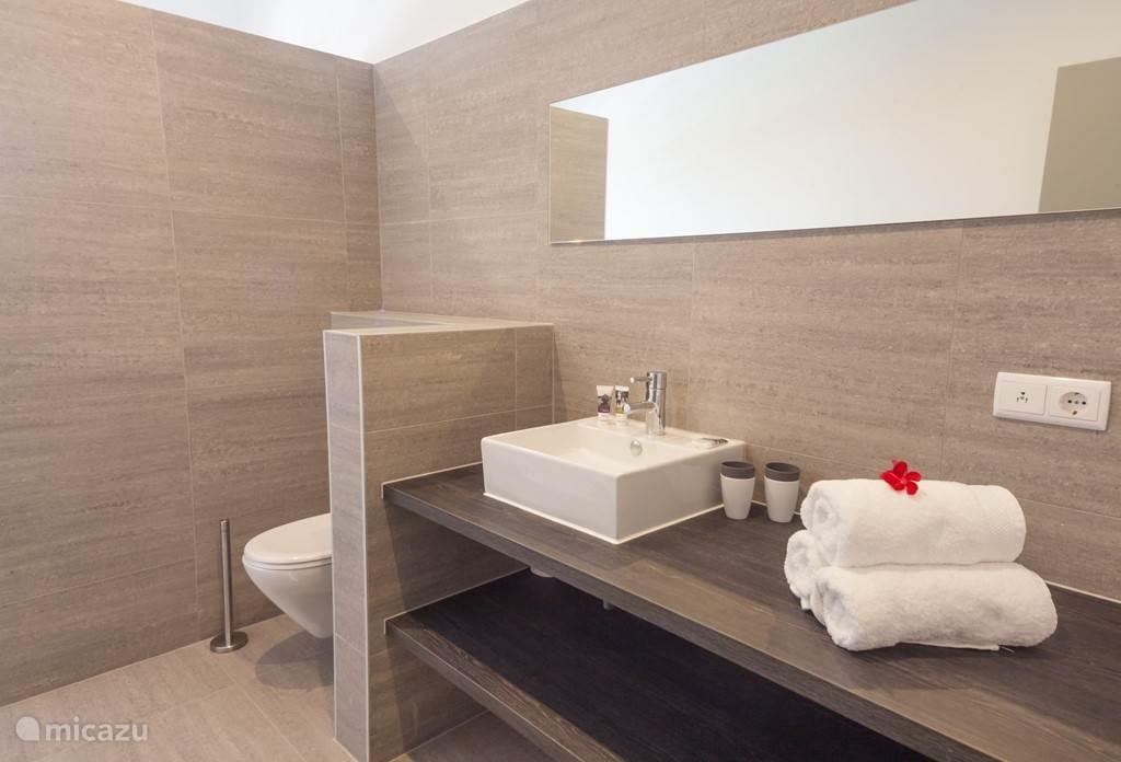 Ruime moderne badkamers