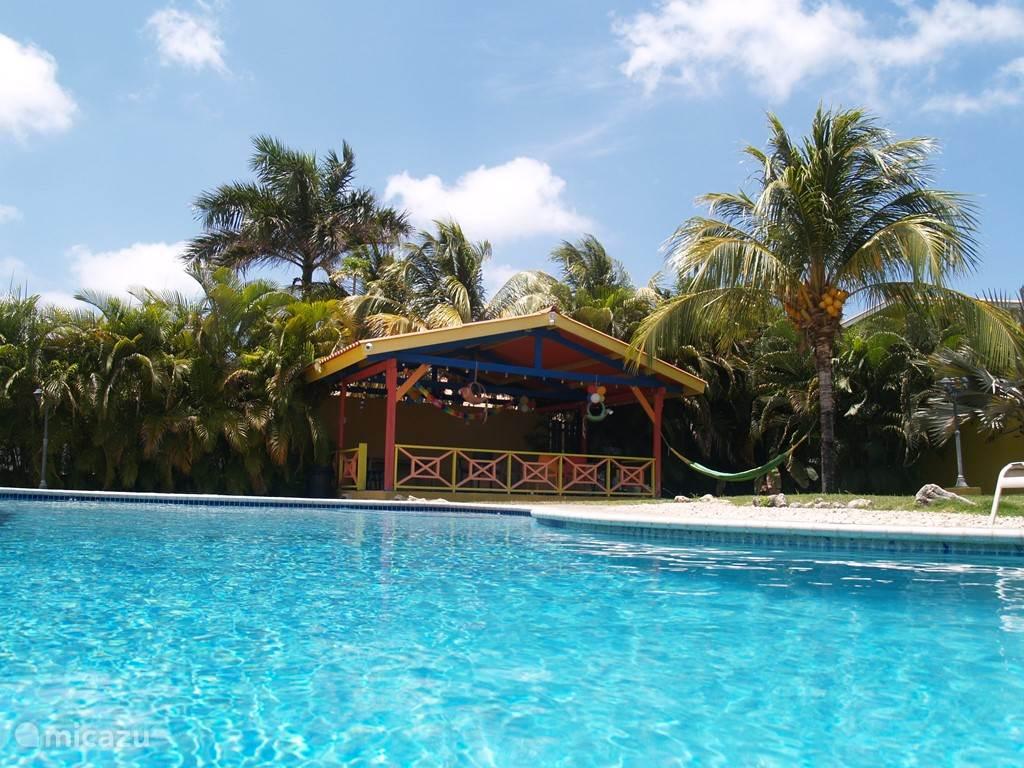 Zwembad met uitzicht op lounge huisje met bbq-voorzieningen