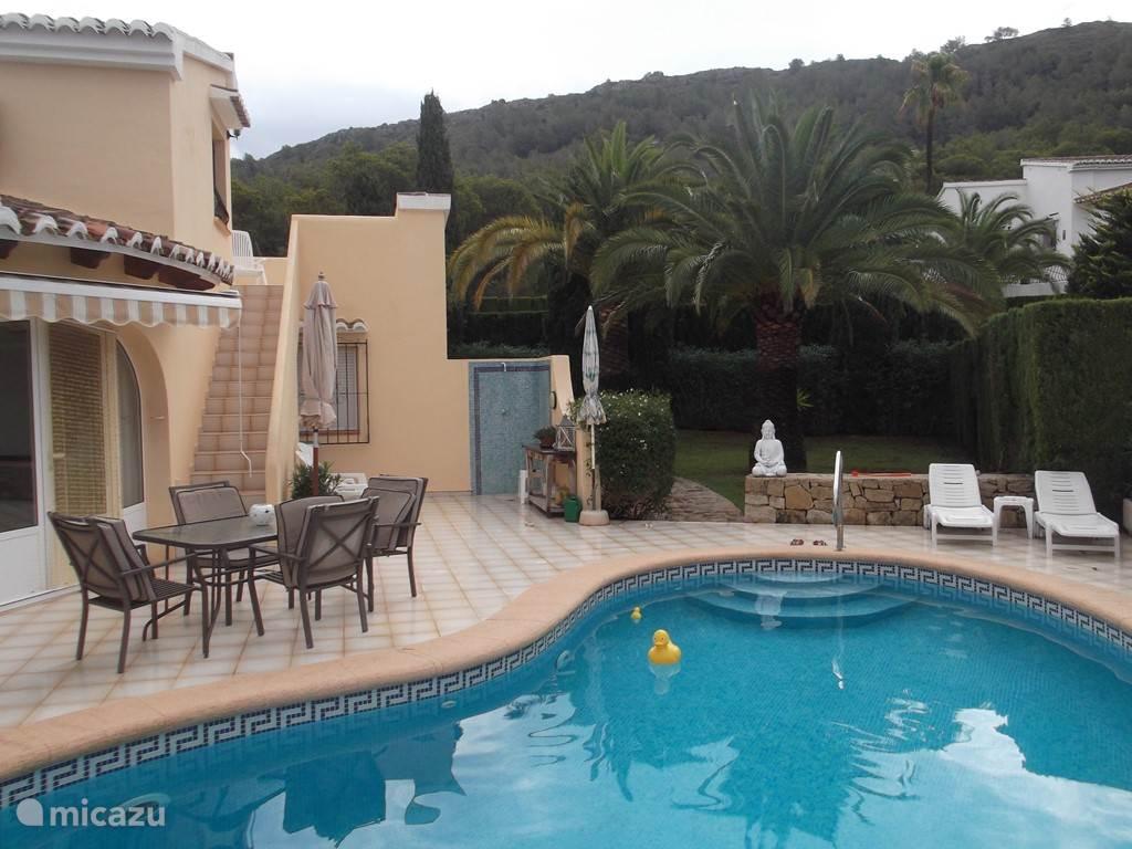 Het zwembad en de tuin