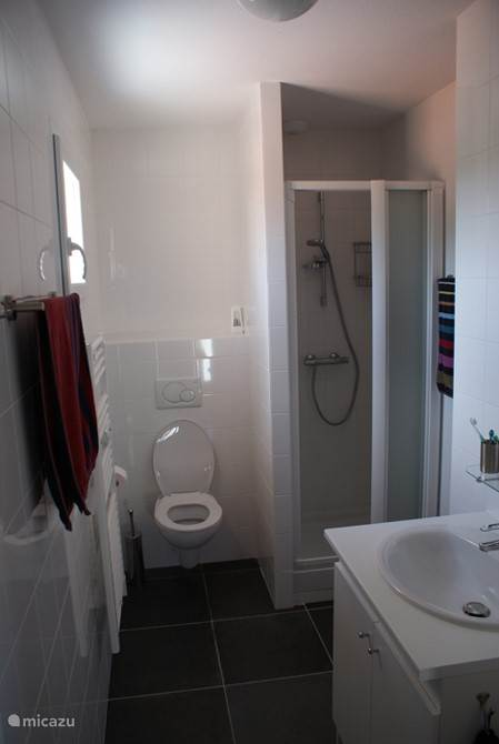 1st floor bathroom with sink, toilet, shower and towel radiator.
