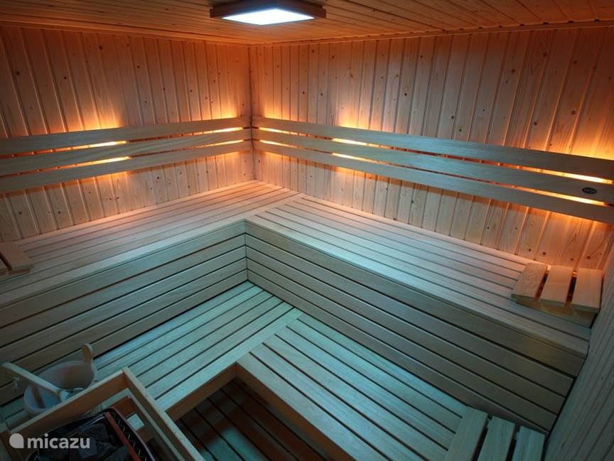 Finnish sauna with color LED light