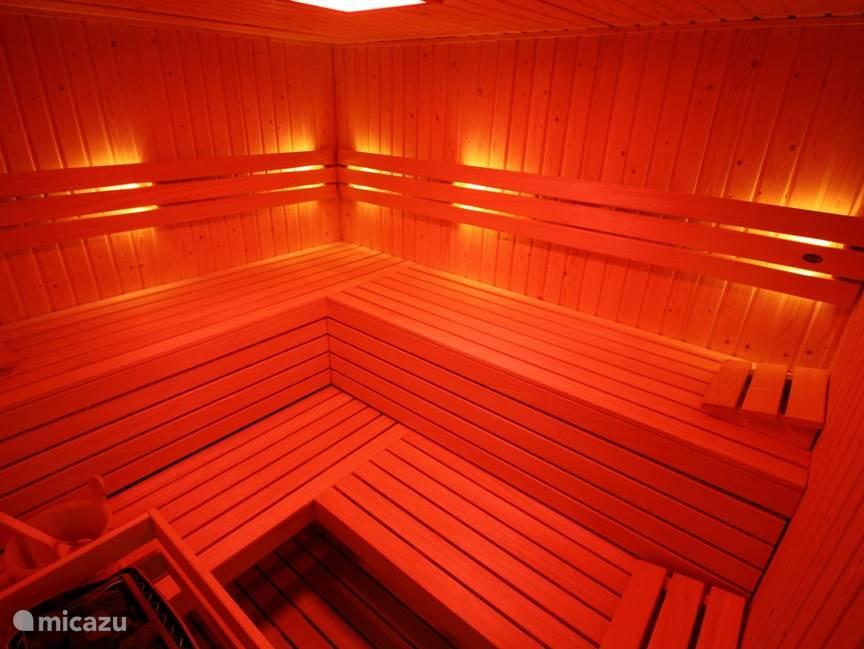 Finse Sauna met kleuren led licht