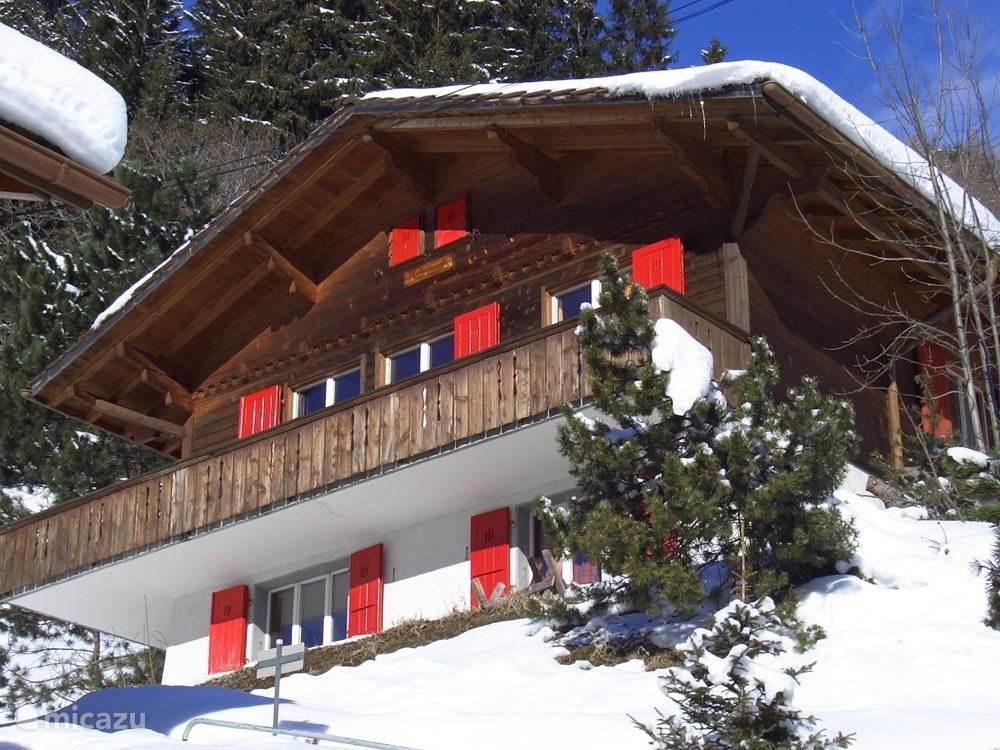Vakantiehuis Zwitserland, Berner Oberland, Adelboden chalet Luxe vrijstaand chalet in Adelboden