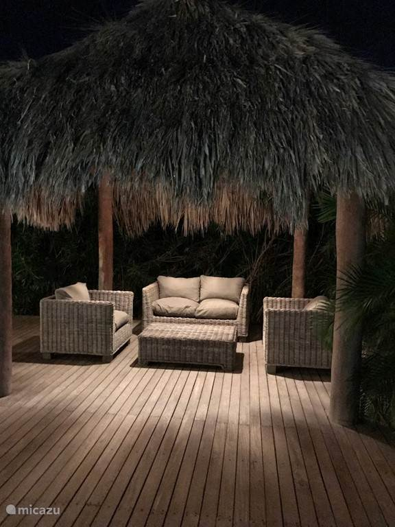 palapa by night