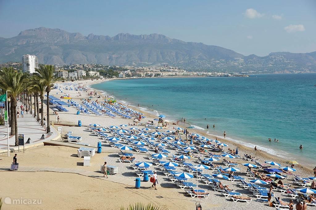 Lekker op het strand met de voetjes in het water, of gewoon op een gehuurd strandbed.
