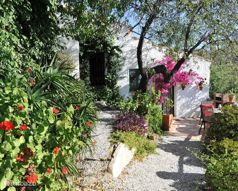 Stedentrip, Spanje, Andalusië, Comares, gîte / cottage Casa Suerte