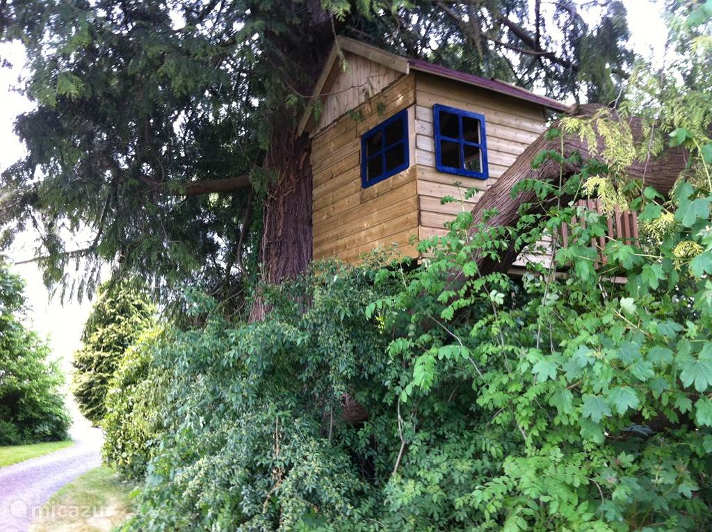 Treehouse overlooking