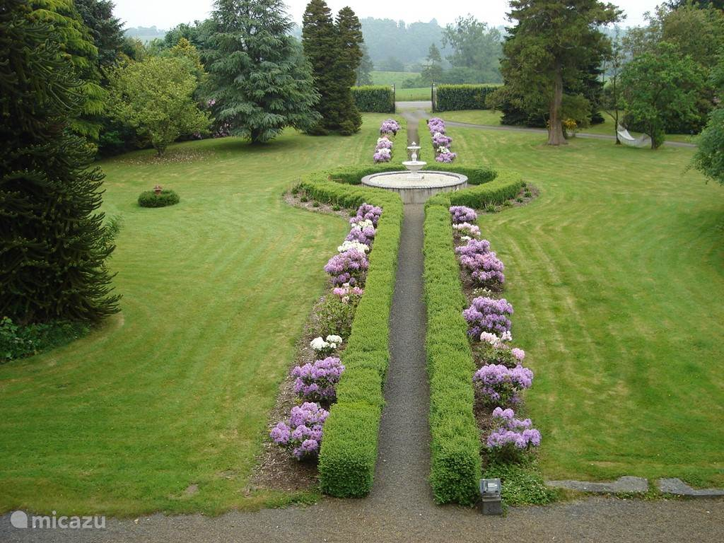 Garden view from above