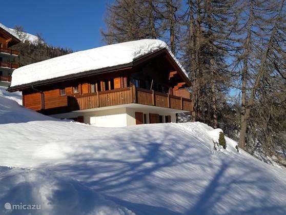 Vakantiehuis Zwitserland, Wallis, Bellwald Chalet Rena