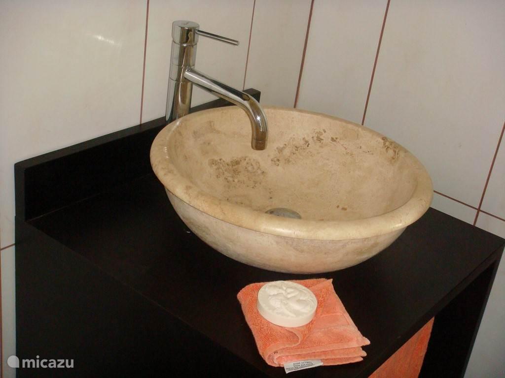 Luxe badkamer met stortdoche