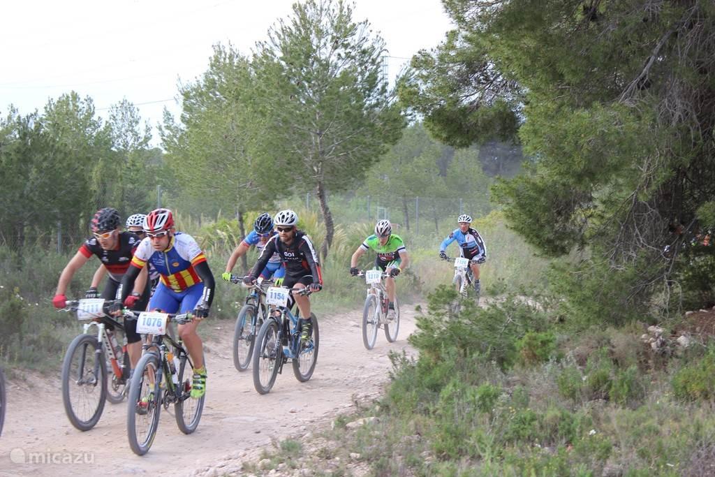 Jaarlijkse mountainbike wedstrijd.