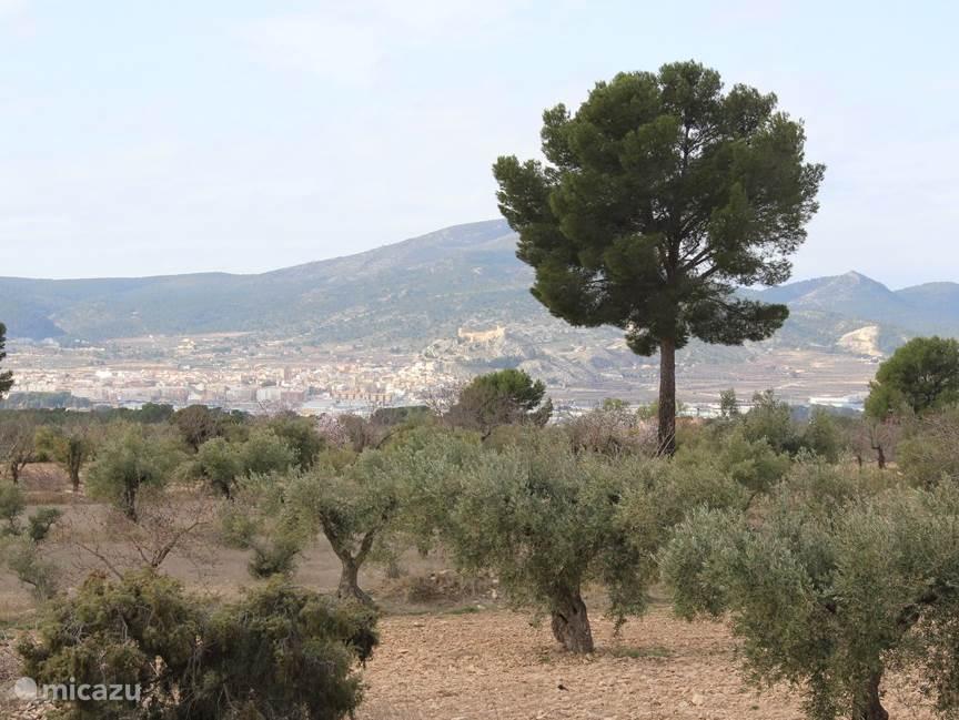 Uitzicht op het kasteel van Castalla