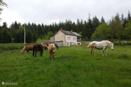 Vakantiehuis Frankrijk, Creuse, Royère-de-Vassivière vakantiehuis Le Puy des Bruges