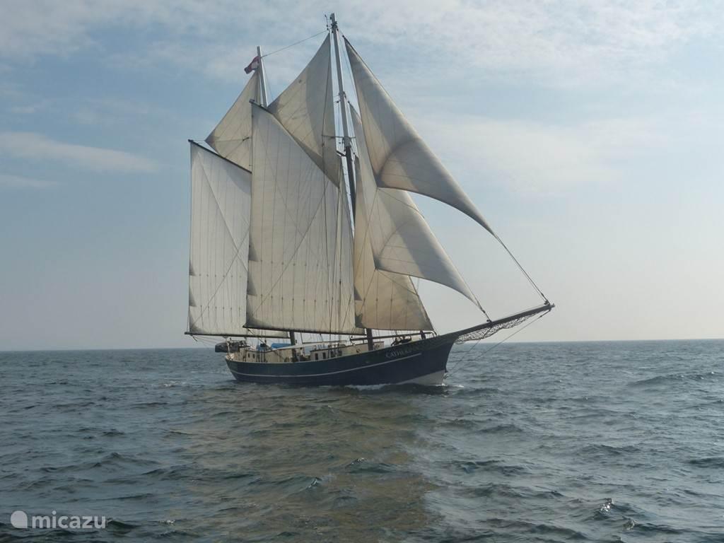 De Catherina onder vol zeil gedurende het zomerseizoen op de Oostzee. Aan boord een aantal families, bekenden van elkaar, die zichzelf verzorgen. Een varend vakantiehuis dus!