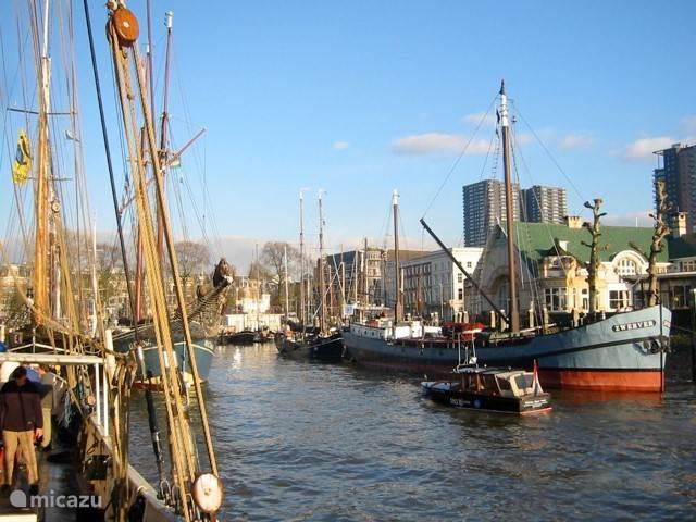 De Veerhaven in het Rotterdamse scheepvaartkwartier