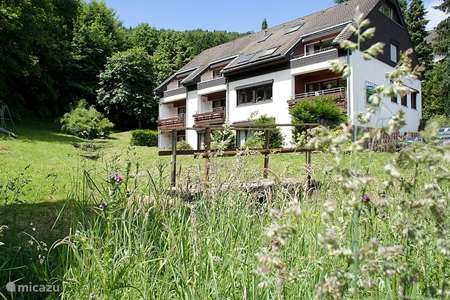 Vacation rental Germany, Sauerland, Elpe holiday house Groupaccommodation Hochsauerland