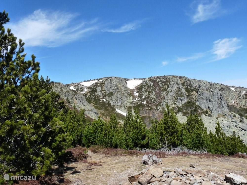 Mont Lozere (april)