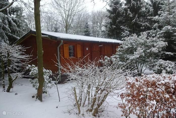 Winter op de Veldkamp